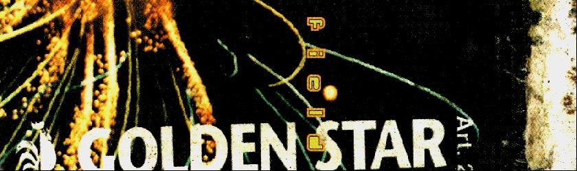 don01_golden_star